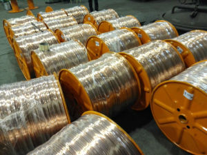 Copper Plated Stranded Conductor pictures & photos