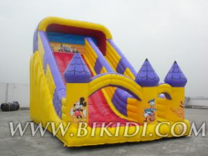 Inflatable Slide, Gaint Slide, Bouncy Slide for Sale (B4046) pictures & photos