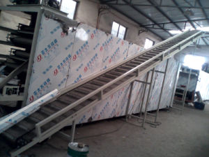 High Capacity World Popular Aquaculture Fish Feed Processing Machine pictures & photos