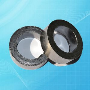Professional Flexible Graphite Spiral Wound Gasket with Low Price pictures & photos