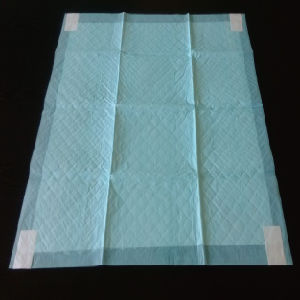 OEM Disposable House Training Pet PEE PEE Pad with Stickers pictures & photos