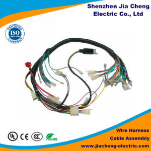 High Quality Wire Harness PVC Insulation Tinned Copper Wire Harness pictures & photos