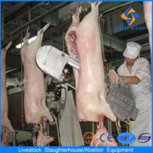 Europe Style Pig Abattoir Machinery pictures & photos