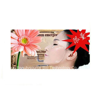 Let a Woman Such as Flower of The Facial Mask pictures & photos