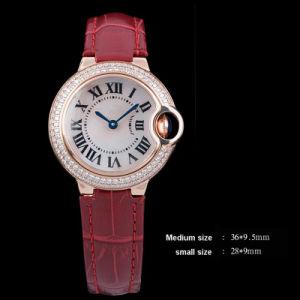 Ballo Bleu Series Quality Fashion Watch (Ctier04)