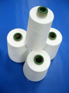 Spun Polyester Yarn for Sewing Thread (30s/3) pictures & photos