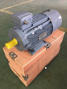 AC Motor with Air Brake in Japan ---Ie3 pictures & photos