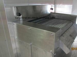 IQF Freezer/Fruit and Vegetable Fluid Quick Freezer/Blast Freezer pictures & photos