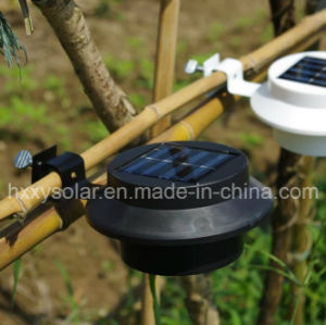 Hot Sale Outdoor European Style LED Mini Garden Light Solar Wall Light pictures & photos