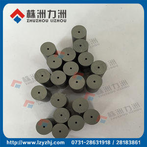 Sintered Gt20 Grade Carbide Punching Dies pictures & photos