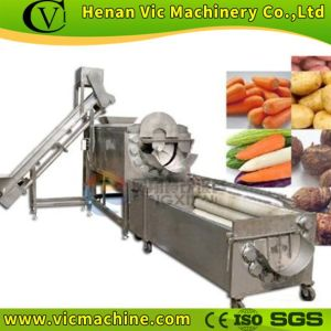 Hot Sale Vegetable Polishing Machine (PG-1500) pictures & photos