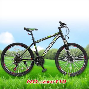 BMX MTB E-Bike Bicycle Parts Manufacturer Road Adult City Fat Electric Scooter Folding Mountain Bike/ Mountain Bicycle pictures & photos