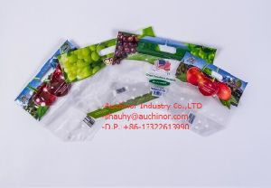 Plastic Food Grade Grape Protection Pouch Bag with Holes pictures & photos