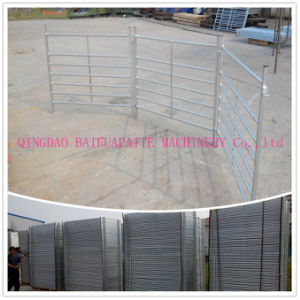 Galvanised Steel Pipe Lambing Pens with Pin pictures & photos