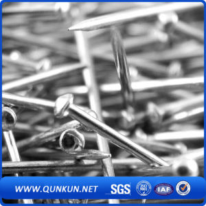"High Quality Bwg9*2.5"" Galvanized Roofing Nail pictures & photos"