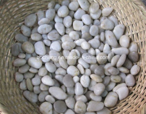 Natural Polished White Pebbles for Paving pictures & photos
