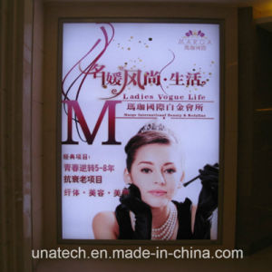 Outdoor or Indoor Wall Mount LED Banner Light Box pictures & photos
