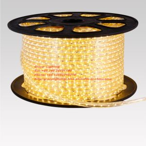 60LEDs 3528 Soft LED Strips (G-SMD3528-60-220V-34-3.2) pictures & photos