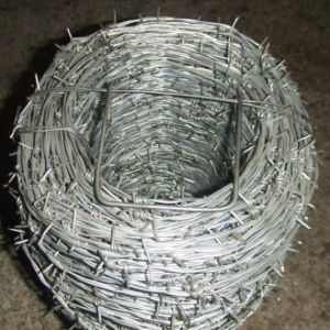 Double Twisted Galvanized Barbed Wire pictures & photos