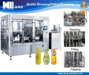 Beverage Bottling Filling Machinery/Equipment pictures & photos