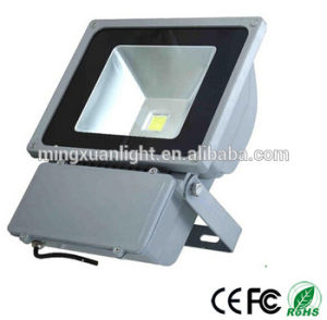 Outdoor Landscape Lighting RGB Color Changing 100W LED Flood Light pictures & photos