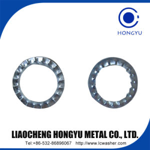 China Supplier DIN6904 Curved Spring Washer pictures & photos