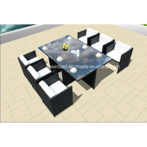 Wicker Furniture Dining Set for Outdoor with Steel Frame / SGS (8219-3) pictures & photos