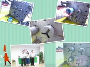 4 Cavity Puller Core Plastic Mould pictures & photos
