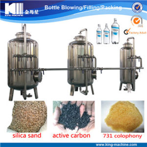 Aqua/Water/Eau Filter Purify System pictures & photos
