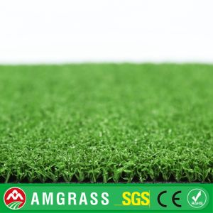 Golf Field 12mm Artificial Turf and Synthetic Grass pictures & photos