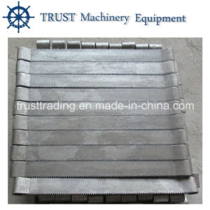 Heat Resistant and Wear Resistant Chain Belt for Furnace pictures & photos