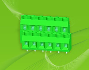 PCBA Screw Terminal Block with Dual Row Pin Header for Wire to Board pictures & photos