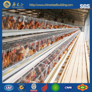 Environment Control Chicken House /Poultry House with Full Set Poultry Equipment pictures & photos