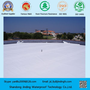 Polyvinyl Chloride Plastic PVC Waterproofing Membrane Roofing Material pictures & photos