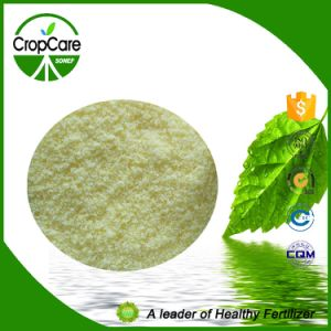 Hot Sell Water Soluble NPK Fertilizer 15-15-15 pictures & photos