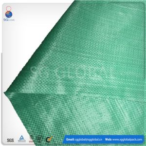 Raffia Bag PP Woven for 25kg 50kg Rice Packing pictures & photos