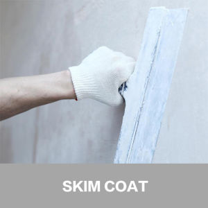 Finest Quality Latex Powders Polymers for Skim Coat pictures & photos