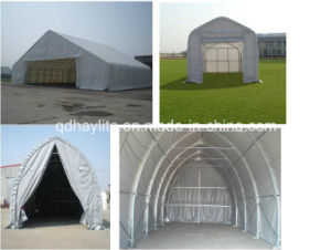 Big Fabric Building for Industrial Use pictures & photos