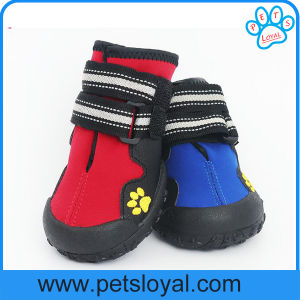 Anti-Slip Waterproof Sole Medium to Large Pet Dog Shoes pictures & photos
