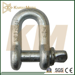 Us Type Drop Forged Dee Shackle (EG / HDG) pictures & photos