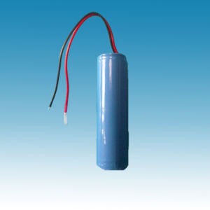 3V/1100mAh Lithium Iron Phosphate Battery Pack pictures & photos