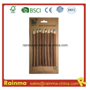 Nature Twig Wooden Color Pencil for Eco Stationery pictures & photos