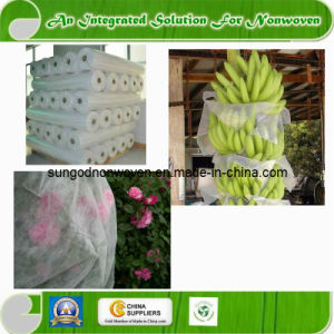 UV PP Agriculture Non Woven Fabric pictures & photos