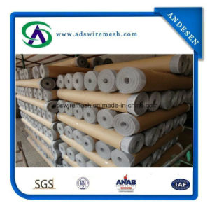 Ss Finishing Alumunium Alloy Window Screen pictures & photos