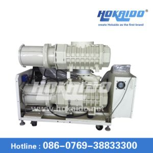 Hokaido Dry Screw Vacuum Pump (RSE1302)