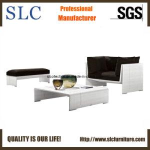 Wicker Sofa Set / Garden Sofa/ Garden Furniture (SC-B5061) pictures & photos