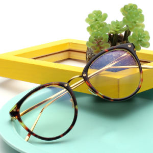 Classic Optical Frame 6835, Brand Name Customized OEM Fashion Optical Galsses