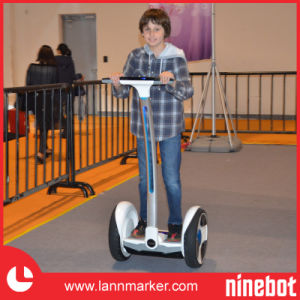 Mini Electric Chariot pictures & photos
