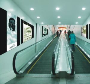 Srh Travelator with GOST Certificate pictures & photos