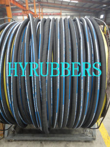 Hydraulic Rubber Hose SAE 100 R1 at/DIN En853 1sn pictures & photos